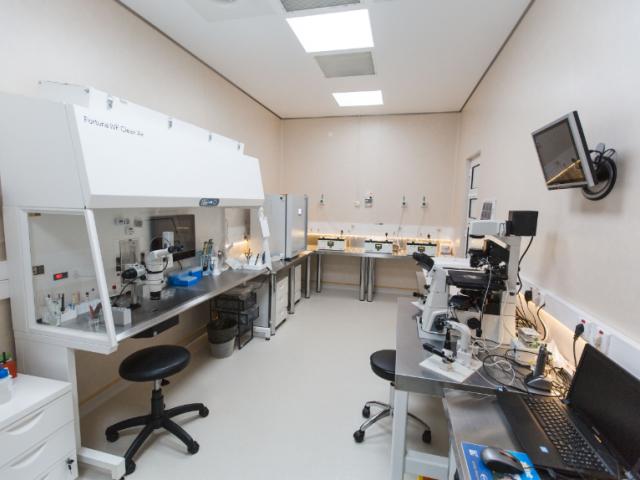 Columna Medical Center a realizat în 2016 peste 1.000 de proceduri de reproducere umană asistată